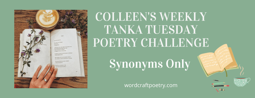 #TANKA TUESDAY #POETRY CHALLENGE NO. 212 #SYNONYMSONLY  #Diningin #Spicy #Food #Celebrations #Fun #Nonet