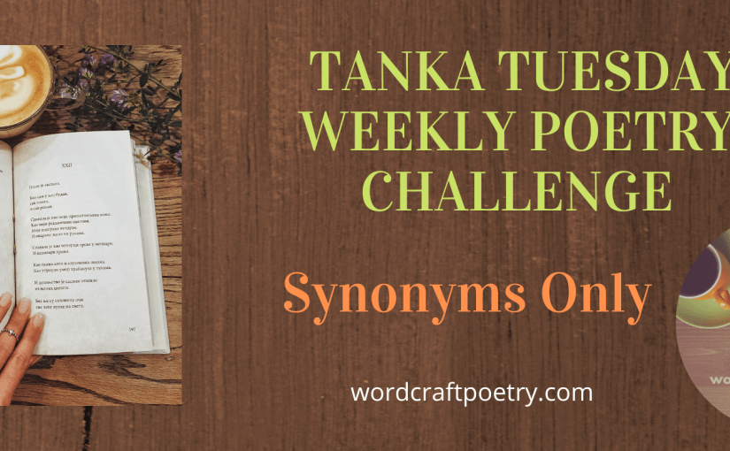 #TANKA TUESDAY #POETRY CHALLENGE NO. 216 @ColleenChesebro #SYNONYMSONLY #Diatelle