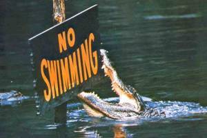 No_Swimming_sign