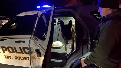 K9 Majlo in the back of patrol car after search