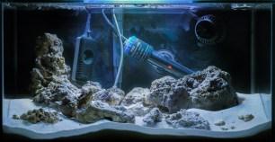 Full tank shot 13.12.2014 from my fluval edge nano reef.