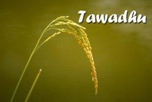 Image Tawadhu