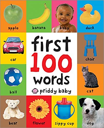 The First 100 Words book