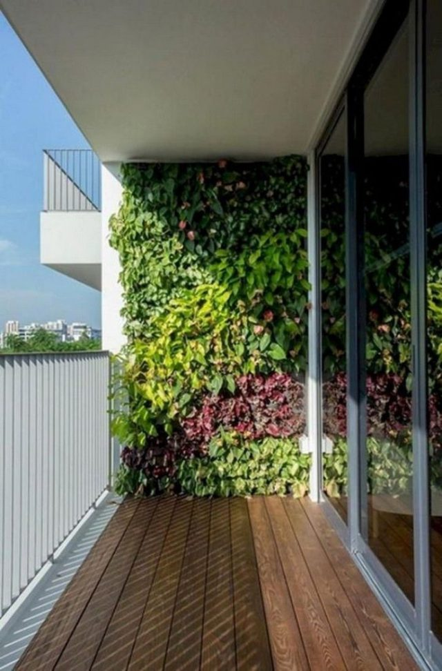 1 Vertical Garden Wall Ideas Condo Apartment Balcony Ideas