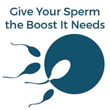 Give Your Sperm the Boost it Needs