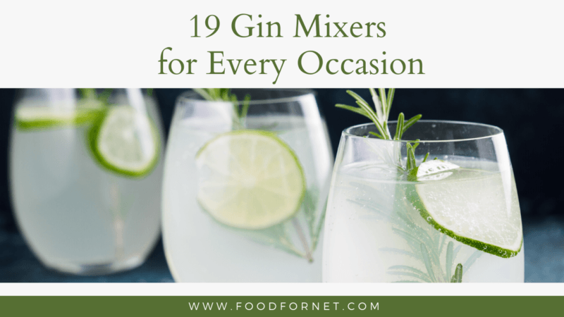 Top 19 Gin Mixers For Fast Easy And Delicious Drinks