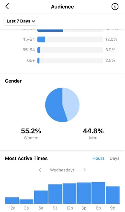audience insights most active times