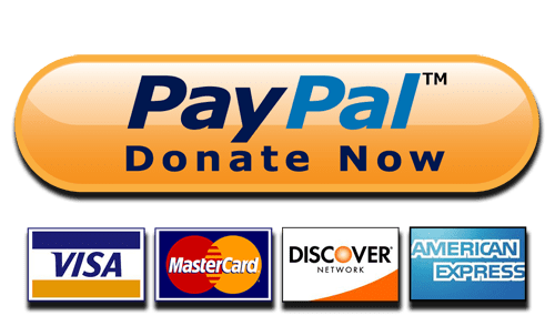 The Problem with the PayPal Donate Button | Mightyblog ◇ Fundraising  content by Mightycause