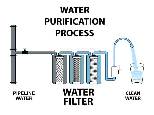 Water is not an organism. Purified Vs Distilled Water 2021 Complete Guide