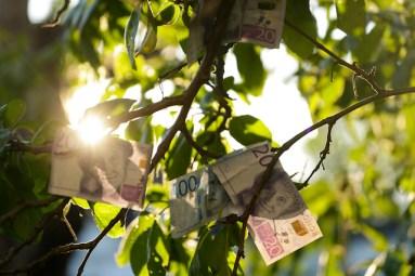 MKA Pengar växer på träd edited