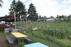 Marra Farm work area