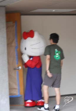 Hello Kitty going off to find the litter box?