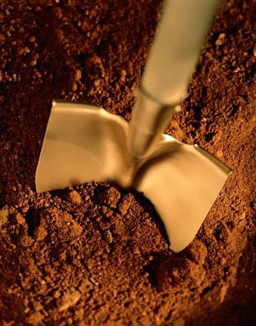 goldenshovel1