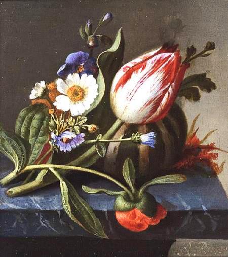 Rachel Ruysch, Amsterdam, 1664-1750