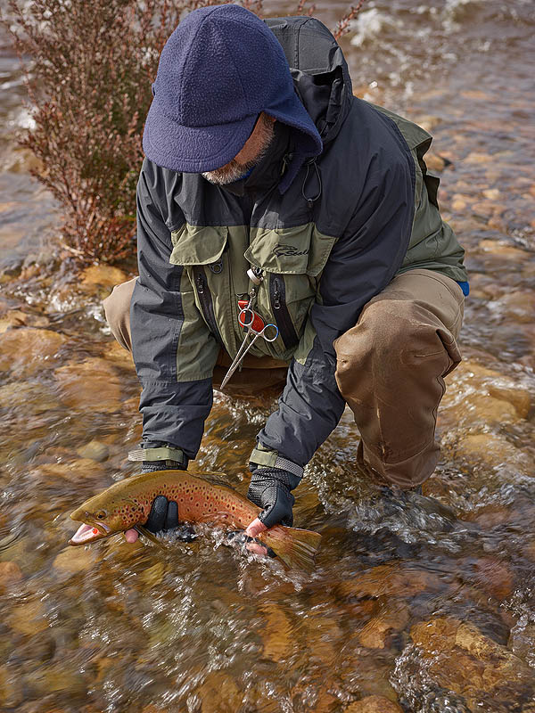 Mark Passfield Releasing Eucumbene Spawning Brown Trout