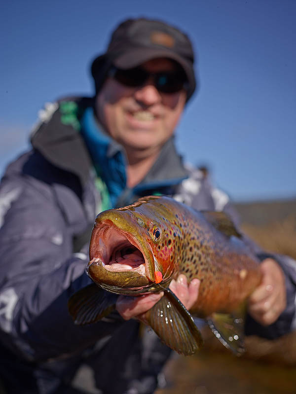 Mark Kelly Eucumbene Spawning Brown Trout