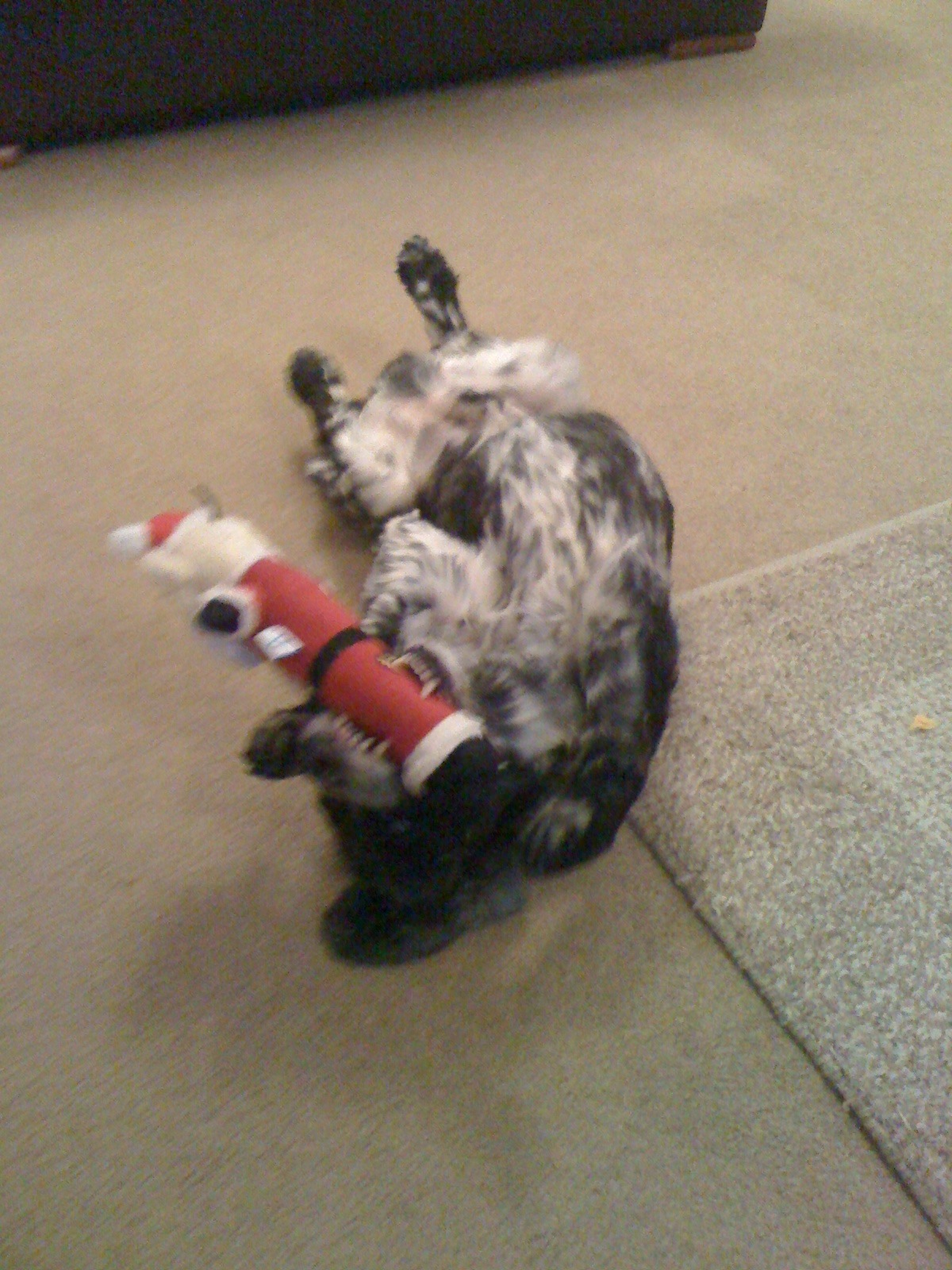 Henry with toy