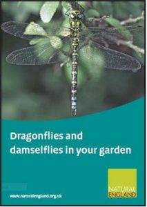 Natural England - Dragonflies and damselflies in your garden icon