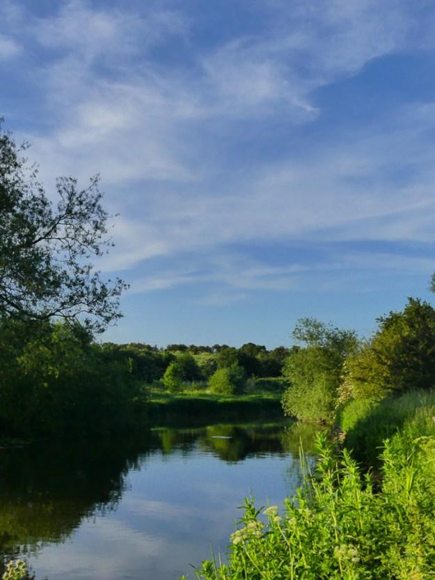 Nene Valley River ©Harry Appleyard, Rushden Lakes 5 June 2018