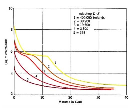 Dark adaptation curve depends on the length and light level