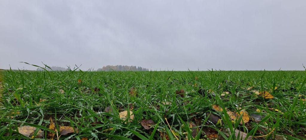 lauksaimniecības zemju iegāde
