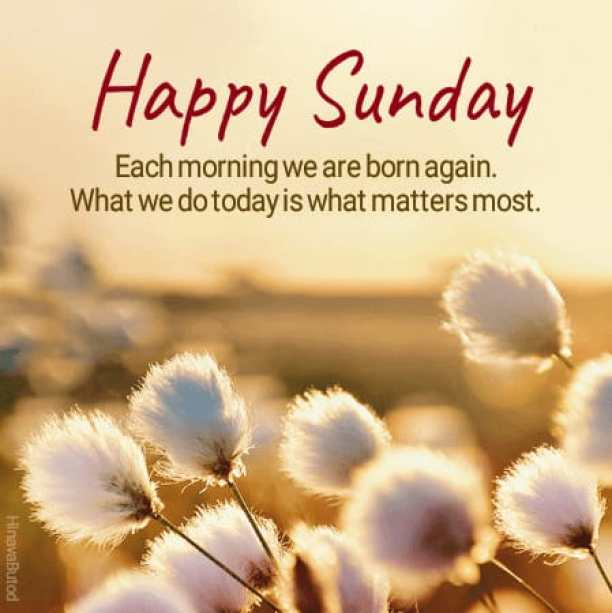 Good Morning Sunday Quotes Messages Images | Happy Sunday Morning