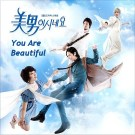 Download You're Beautiful Korean Drama