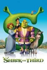 Shrek the Third 2007 Dual Audio 480p & 720p Movie Download in Hindi