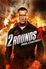 12 Rounds 2: Reloaded 2013 BluRay 480p & 720p Full HD Movie Download