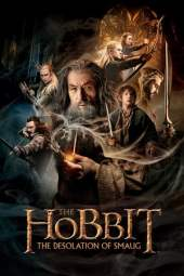 The Hobbit: The Desolation of Smaug (2013) BluRay 480p & 720p Movie Download