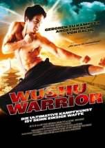 Wushu Warrior (2011) DVDRip 480p & 720p HD Movie Download