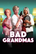Bad Grandmas (2017) WEBRip 480p & 720p Free HD Movie Download