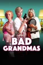 Bad Grandmas (2017) WEBRip 480p & 720p Free HD Movie Download