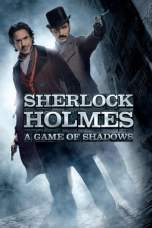 Sherlock Holmes: A Game of Shadows (2011) BluRay 480p & 720p Movie Download