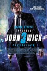 John Wick: Chapter 3 - Parabellum (2019) BluRay 480p & 720p Download