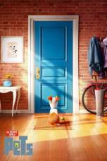 The Secret Life of Pets (2016) BluRay 480p & 720p Free Movie Download