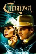 The Godfather: Part II 1974 BluRay 480p & 720p Download and