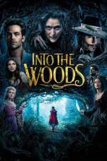 Into the Woods (2014) BluRay 480p & 720p Free HD Movie Download