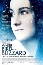 White Bird in a Blizzard (2014) BluRay 480p & 720p Movie Download