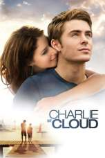 Charlie St. Cloud (2010) BluRay 480p & 720p Free HD Movie Download