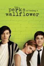 The Perks of Being a Wallflower (2012) BluRay 480p & 720p Download