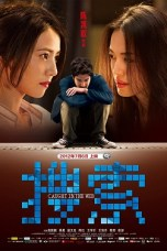 Caught in the Web (2012) BluRay 480p & 720p Chinese Movie Download