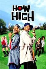How High (2001) WEBRip 480p & 720p Free HD Movie Download
