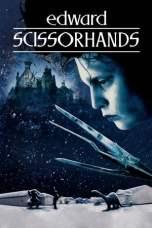 Edward Scissorhands (1990) BluRay 480p & 720p HD Movie Download