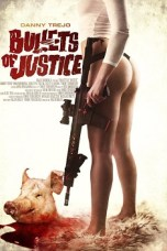 Bullets of Justice (2019) WEBRip 480p | 720p | 1080p Movie Download