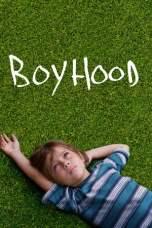 Boyhood (2014) BluRay 480p & 720p Free HD Movie Download