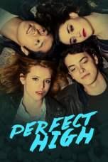 Perfect High (2015) WEBRip 480p & 720p Free HD Movie Download