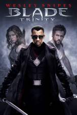 Blade: Trinity (2004) BluRay 480p | 720p | 1080p Movie Download