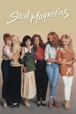 Steel Magnolias (1989) BluRay 480p, 720p & 1080p Movie Download
