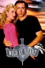 Wild at Heart (1990) BluRay 480p, 720p & 1080p Mkvking - Mkvking.com